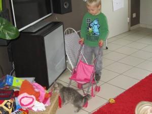 Jasper en kat1